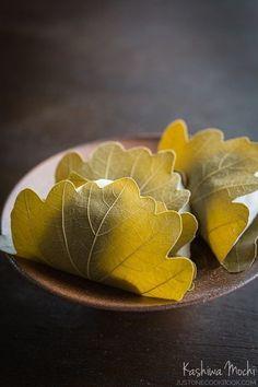 Kashiwa Mochi | Easy Japanese Recipes at JustOneCookbook.com