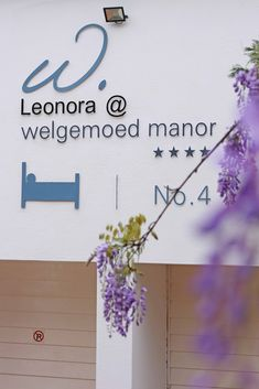 Leonora at Welgemoed Manor  4 Kommissaris Street, Welgemoed, Bellville (021) 9132205 Email: leonora@welgemoed.co.za   Leonora at Welgemoed Manor offers artistic luxurious and meticulously clean accommodation.  Guests are invited to enjoy the lush garden and patio (stoep) where a delicious breakfast could be served or a refreshing cup of coffee or tea.  #accommodation  #Leonora  #welgemoedmanor #bandb #guesthouse #luxury #bellville #welgemoed #central #capetown #southafrica #music #art Cosy Bed, Small Fridges, Lush Garden, Cape Town, Bed And Breakfast, Place Card Holders, Internet Tv, Dryers, Invitations