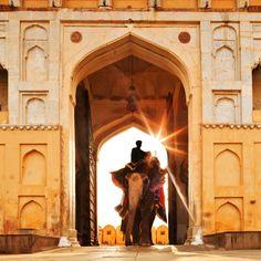 Fuerte Amber  - India del Norte: un viaje por los tesoros de la cultura hindú