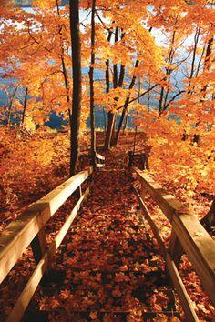 Best Autumn Landscape Photos - Cabin Living