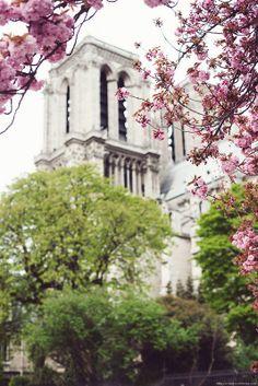 Spring in Paris 2014
