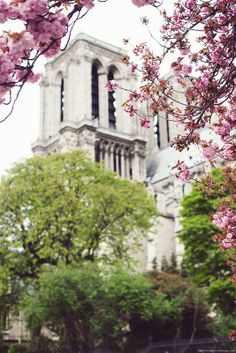 Spring in Paris 2014