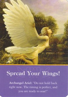 The time has come for you to stop procrastinating, move forward with enthusiasm & gusto. Spread your wings & fly.