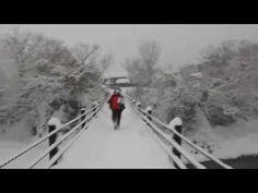 [白川鄉] 白川鄉交通 濃飛巴士 流程攻略~ 北陸高山PASS - GOtrip.hk