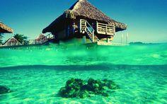 Wallpaper Bungalouri De Inchiriat In Bora Bora