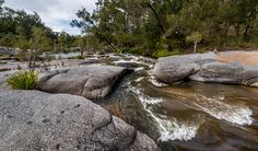 Mann River campground and picnic area, Mann River Nature Reserve. Photo: John Spencer