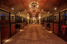 State of the Art Equestrian Facility ~ Wellington, FL | The Chronicle of the Horse