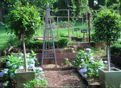 Our blue picking garden.  I adore blue hydrangeas, so we have a little picking garden that only has blue hydrangeas in it. In the summer, the whole house is full of bouquets of these beautiful blousy flowers. Janelle McCulloch's Library of Design: Gatsby-Inspired Blue Gardens