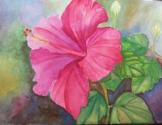 watercolor panting of hibiscus flower from tutorial by Ross Barbera. Link to the tutorial here http://www.youtube.com/watch?v=2iB8Cfn9VDM