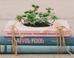 best friend birthday gifts, flower pot made from three books in pastel blue and pink, tied with string, and containing some planted succulents