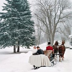 Horse-drawn wedding sleigh. I'd love that except I don't really wanna get married in the winter lol