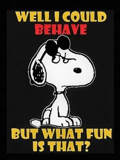 Sounds like fun. Charlie Brown Quotes, Charlie Brown And Snoopy, Peanuts Quotes, Snoopy Quotes, Peanuts Cartoon, Peanuts Snoopy, Cartoon Fun, Cartoon Memes, Snoopy Love