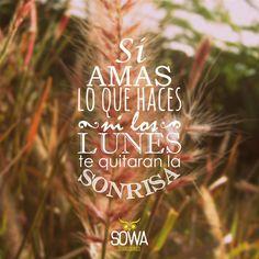 #frases #sowadg #quotes #inspiración #socialmedia