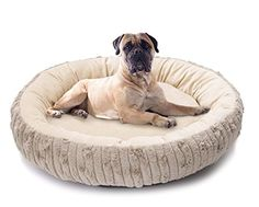 HappyCare Textiles Round Cute and Comforter Fur and MicroMink Fabric Pet Bed Medium Grey *** Be sure to check out this awesome product.(This is an Amazon affiliate link and I receive a commission for the sales)