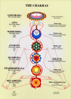 the chakras....