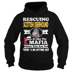 Rescuing SCOTTISH DEERHOUND Is The Like Mafia #gift #ideas #Popular #Everything #Videos #Shop #Animals #pets #Architecture #Art #Cars #motorcycles #Celebrities #DIY #crafts #Design #Education #Entertainment #Food #drink #Gardening #Geek #Hair #beauty #Health #fitness #History #Holidays #events #Home decor #Humor #Illustrations #posters #Kids #parenting #Men #Outdoors #Photography #Products #Quotes #Science #nature #Sports #Tattoos #Technology #Travel #Weddings #Women