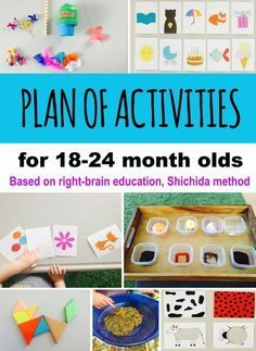 Shichida method overview. Plan of activities for all ages. Our adaptation for 18-24 month olds. – Chicklink