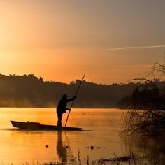Golden morning...Jorge Maia