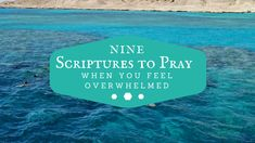 9 Scriptures To Pray When You Feel Overwhelmed - Dr. Dalton-Smith - I Choose My Best Life