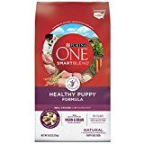 Purina One Smartblend Natural Healthy Weight Formula Adult Dry Dog Food – Lb. Sack – Purina One Smartblend Natural Healthy Weight Formula Adult Dry Dog FoodReal Turkey Is The Ingredient Purina One Puppy Food, High Protein Dog Food, Formula 4, How To Grow Muscle, Dog Storage, Natural Vitamins, Dry Dog Food, Diets, Products