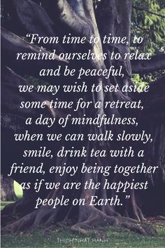 Buddhist Monk Thich Naht Hanh Quote about friendship, peace, and joy.