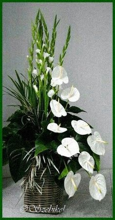 Types Of Purple Flowers Products Printer Metal Technology Referral: 6317836511 Gladiolus Arrangements, White Flower Arrangements, Creative Flower Arrangements, Artificial Floral Arrangements, Funeral Flower Arrangements, Altar Flowers, Church Flowers, Funeral Flowers, Exotic Flowers