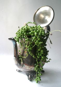 string of pearls. love it! #ecrafty find glass pearls at http://www.ecrafty.com/c-595-glass-pearls.aspx