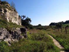 De Wolfskopwandelroute brengt je middels een app langs de bijzonder flora en fauna van de wandelgemeente 2015, de gemeente Eijsden-Margraten in Zui- Limburg