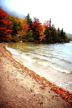 new england fall - Fall pictures nature - New England Fall, Autumn Scenery, Autumn Aesthetic, Fall Pictures, Autumn Photos, Color Pictures, Halloween Pictures, Amazing Pictures, Fall Season