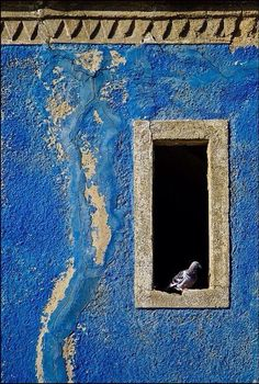 Pared azul