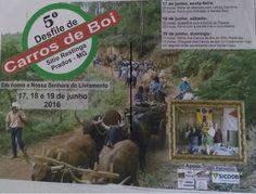 Festas de Carros de Boi: Desfile de Carros de Boi em Prados - MG