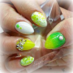 Neon Seashells