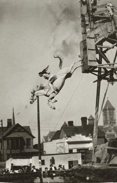 Sonora Webster Carver -- and her diving horse. Wild Hearts Can't Be Broken. Horse diving shape for tattoo?
