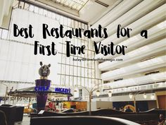 With 100+ restaurants on the Walt Disney World property, a first time visitor can get overwhelmed with all of the options! As a fan of Disney dining, I have a few tried and true restaurants that I suggest to all first time visitors! Chef Mickey's Here you can dine with Mickey and the gang …