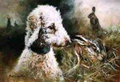 Bedlington Terrier by Mick Cawston