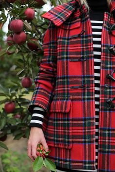 tartan + stripes = one of my favorite combos Oversized Sweater Outfit, Sweater Outfits, Fall Outfits, Cute Outfits, Tartan Mode, Tartan Plaid, Plaid Coat, Plaid Jacket, Pullover Outfit