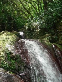 Rocaliza Adventure Tours, Puerto Rico