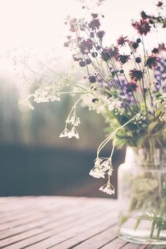 Fleur or Flower