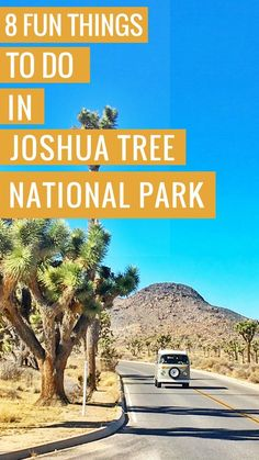 Looking for fun things to do in Joshua Tree? Did you know you could make it a day trip from Palm Spring? Here are 8 Fun Things to Do in Joshua Tree that you're bound to enjoy! #joshuatree #california #nationalparks #Joshuatreenationalpark