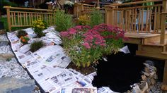 use newspapers to stop weeds.. SO DOING THIS this year!