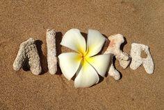 Aloha ~