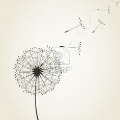 From a dandelion seeds fly. A vector illustration Stock Photo - 13172894