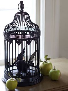 Cast a Spell.  Can use an overturned black mesh wastebaket from Dollar Tree + one of their birds