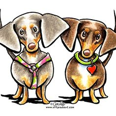 Dashing Dachshunds pen and ink illustration by Off-Leash Art.