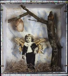 Mixed Media Assemblage Box with real butterfly wings, light in praying mantis pod, real oak branch  Dawn Broadfield