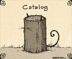 cat/log