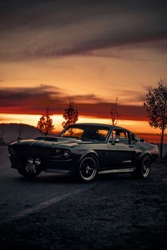 Search results for: Mustang - Ford Mustang Shelby Gt500, Ford Mustang 1967, Mustang Cobra, Classic Mustang, Ford Classic Cars, Best Muscle Cars, Car Wallpapers, Dream Cars, Photos