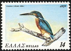 Common Kingfisher stamps - mainly images - gallery format