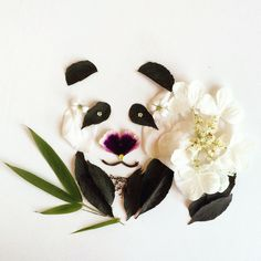 Panda - Flora Forager - Bridget Beth Collins - floraforager.com
