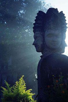 Buenos días, con todos los sentidos puestos en el #finde / Good Morning from Thailand. All our sense focus in the #weekend